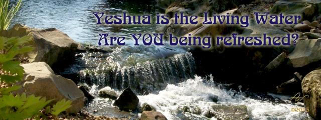 Banner Yesheua 10122-Banner